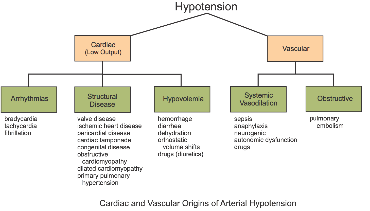 CV Physiology   Hypotension  Introduction